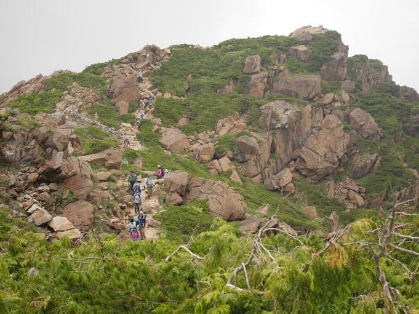 蛇紋岩と花の名山 至仏山_a0351368_22024702.jpg