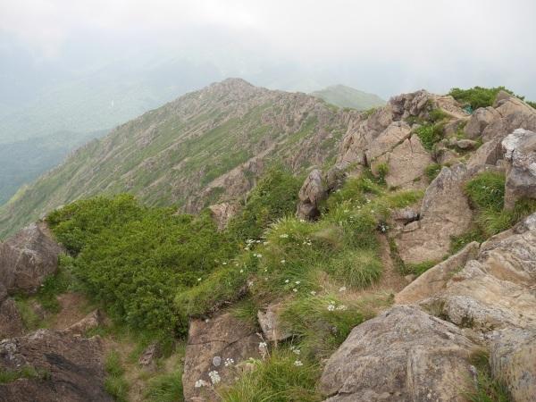 蛇紋岩と花の名山 至仏山_a0351368_22042534.jpg