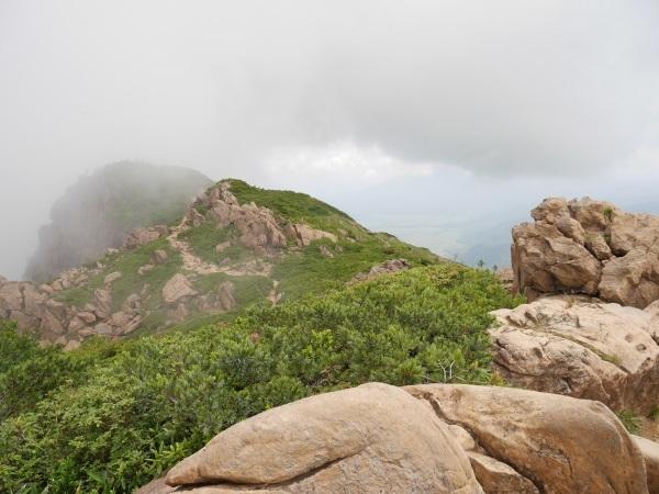 蛇紋岩と花の名山 至仏山_a0351368_22065585.jpg