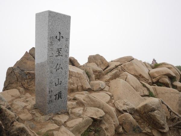 蛇紋岩と花の名山 至仏山_a0351368_22134657.jpg