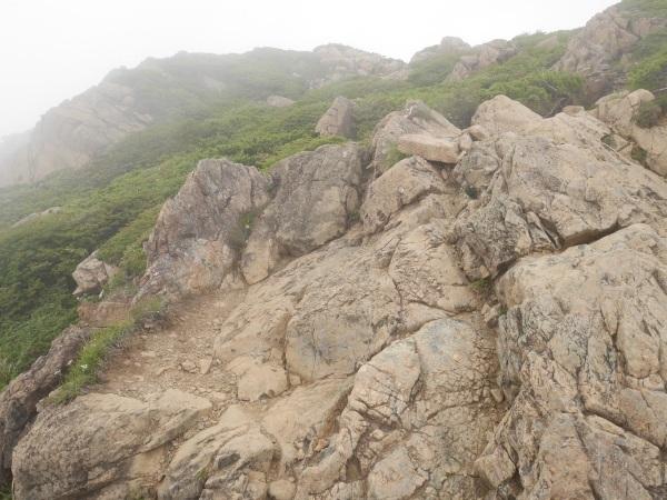 蛇紋岩と花の名山 至仏山_a0351368_22154769.jpg