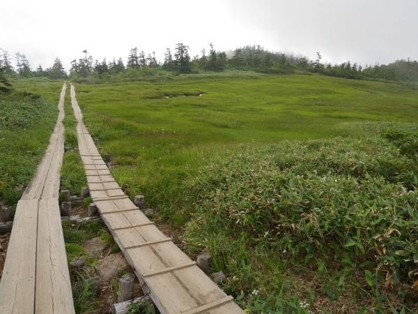 蛇紋岩と花の名山 至仏山_a0351368_22174865.jpg