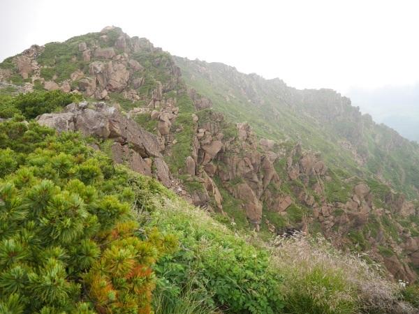 花の名山 至仏山の高山植物_a0351368_22543755.jpg