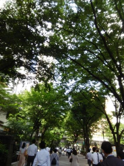 新宿の健康弁当は、鯖だった!472kcal。_c0212604_13105154.jpg