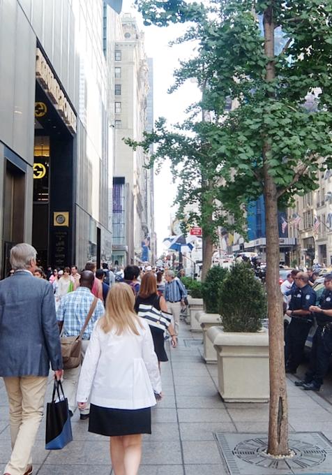 いかにもニューヨークらしい、改装工事中の5番街のお店を覆う防塵壁上の巨大ポスターや壁画_b0007805_215265.jpg