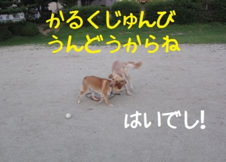 b0008217_17161389.jpg