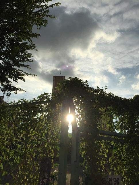 表参道キューバの見える夜・番外編_a0103940_18324410.jpg