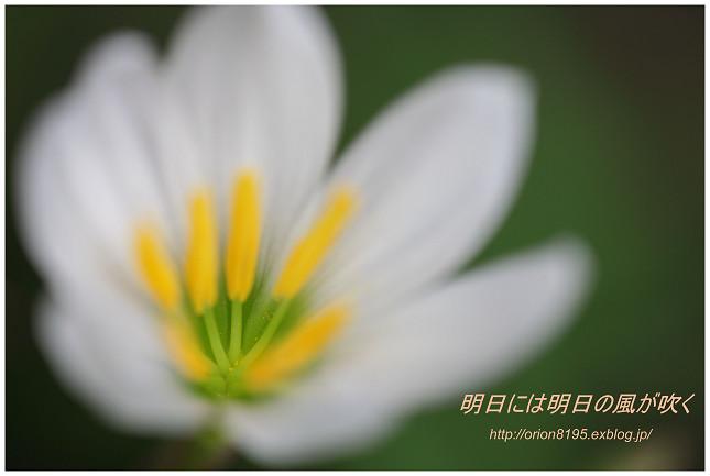 f0361079_228462.jpg