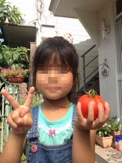 トマトの凛々子さん ③_e0012580_15184211.jpg