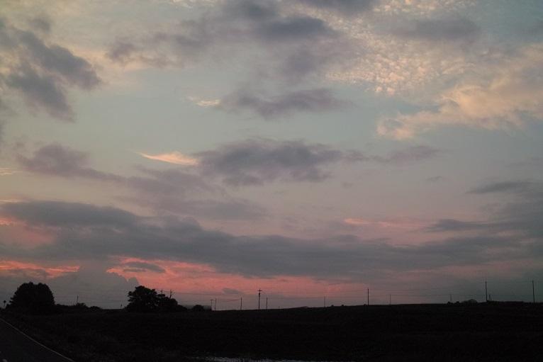 梅雨明けはまだかいな_f0163491_2134035.jpg
