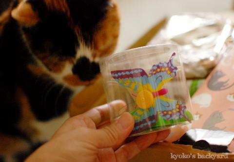 箱根から届いた噂のおもちゃ_b0253205_05373881.jpg