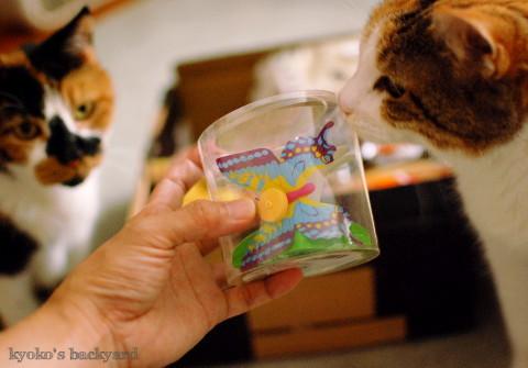 箱根から届いた噂のおもちゃ_b0253205_05541191.jpg