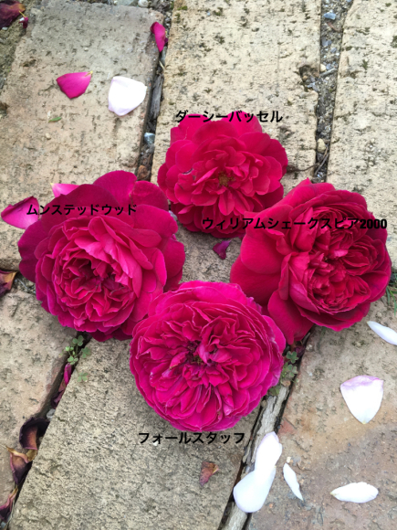 c0359445_01022593.jpg