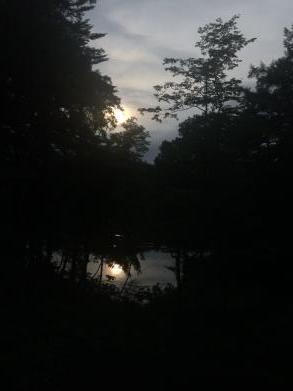 日暮れ時の散歩_c0341450_13442373.jpg