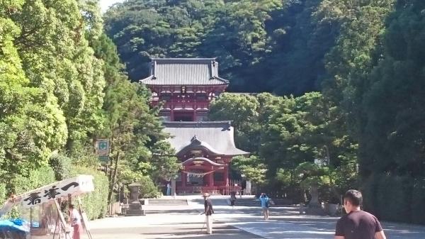 鎌倉下見_b0211757_08504328.jpg