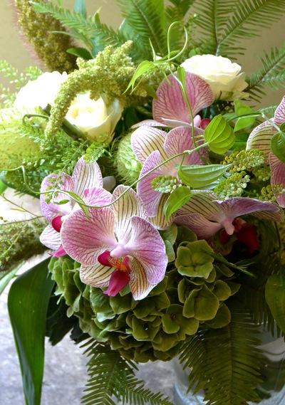 暑さに負けないお花。。。_a0229658_17461687.jpg