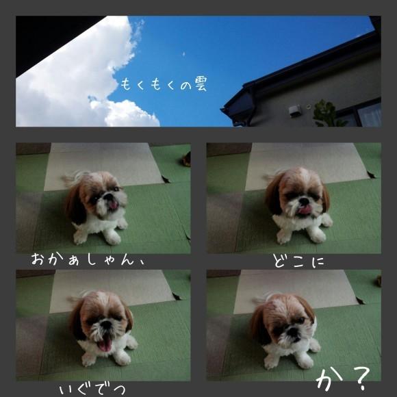 b0306158_14214258.jpg