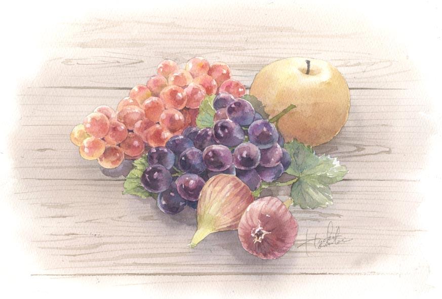 果実 水彩画_f0176370_1628331.jpg