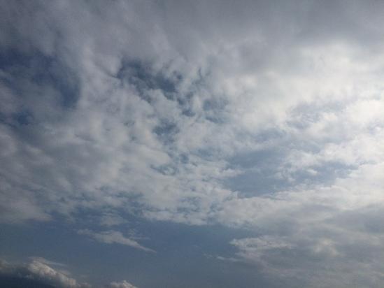 ちょっと旅 to 沼津_f0236691_10284323.jpg