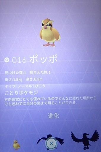 a0354506_10493616.jpg