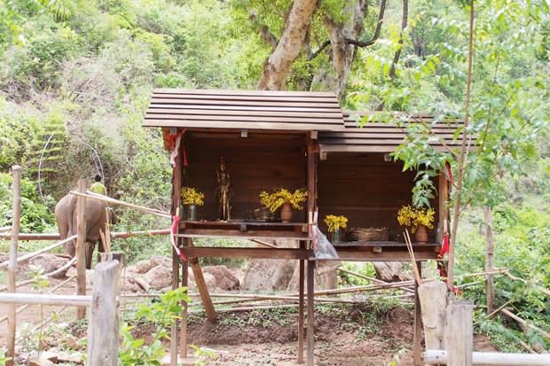 南シャン州の山で象と戯れる GREEN HILL VALLEY 3_c0098222_00564251.jpg