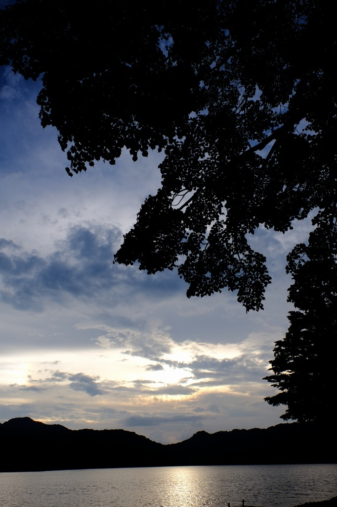 梅雨明けはまずは撮影 by FUJIFILM X-T2_f0050534_23550310.jpg