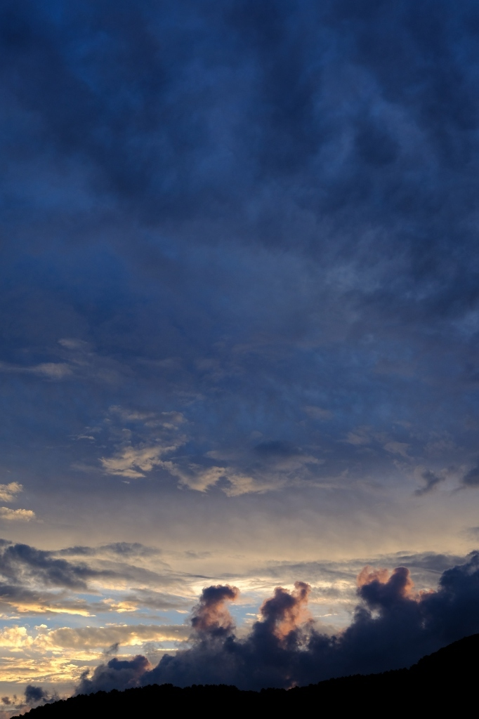 梅雨明けはまずは撮影 by FUJIFILM X-T2_f0050534_23551877.jpg