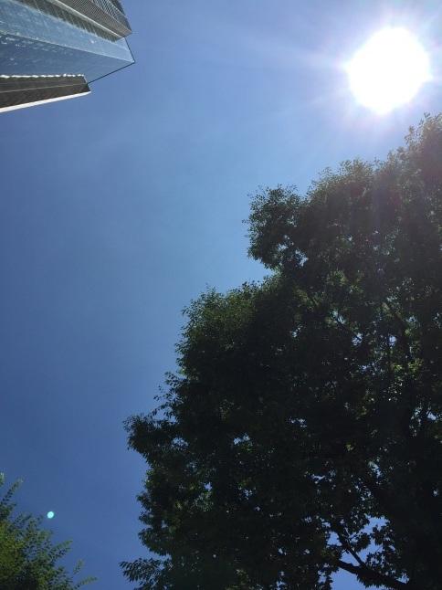 夏の道玄坂上 _a0103940_14180921.jpg