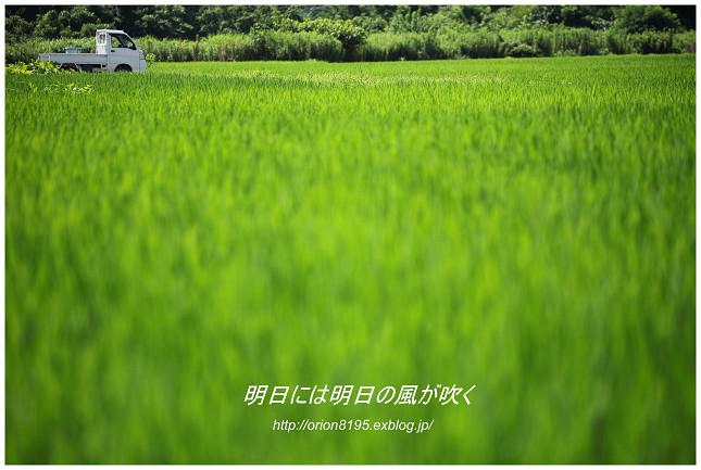 f0361079_16512011.jpg