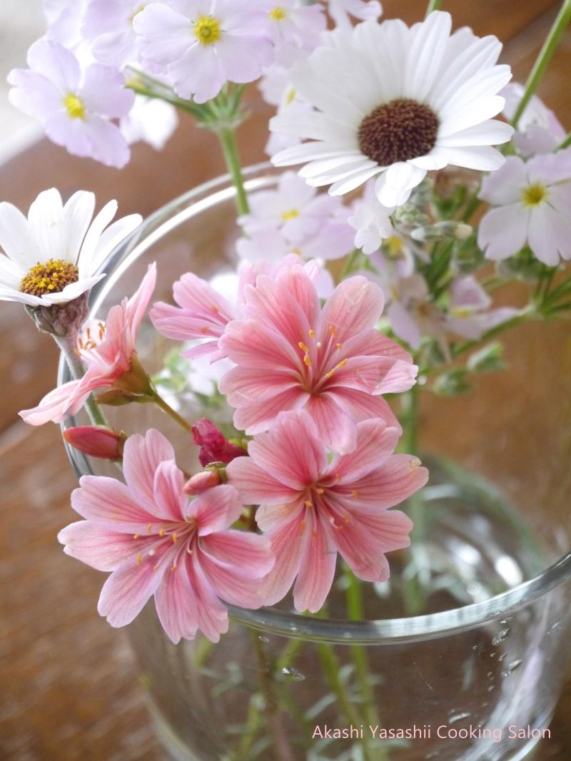 ピンクな春の花_f0361692_11383469.jpg