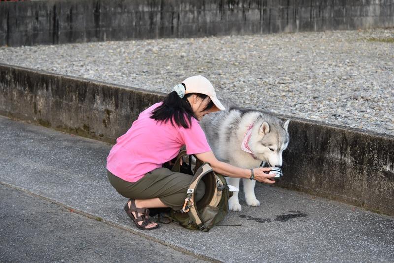 あんな猫こんな猫ぎょーっ! (≧∇≦)_c0049299_2259119.jpg