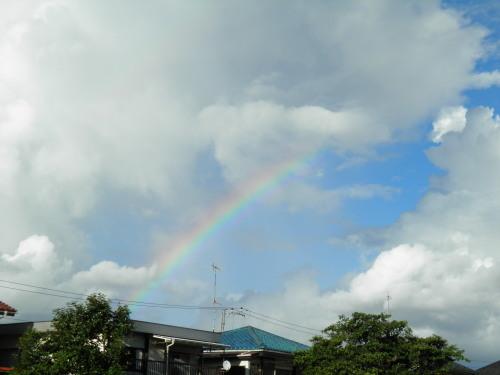 虹をみたかい?(Have you ever seen the rainbow?)_c0338136_22523773.jpg