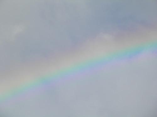 虹をみたかい?(Have you ever seen the rainbow?)_c0338136_22524736.jpg