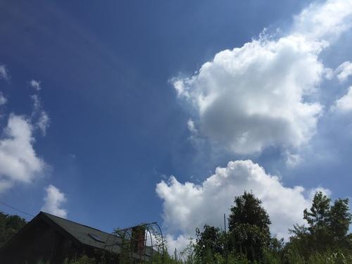 夏ですね~_c0331145_19483921.jpg