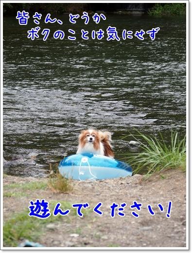 d0013149_22401222.jpg