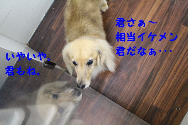 昨日は♪_b0130018_6503926.jpg