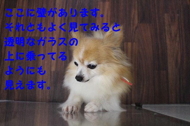 昨日は♪_b0130018_6593057.jpg
