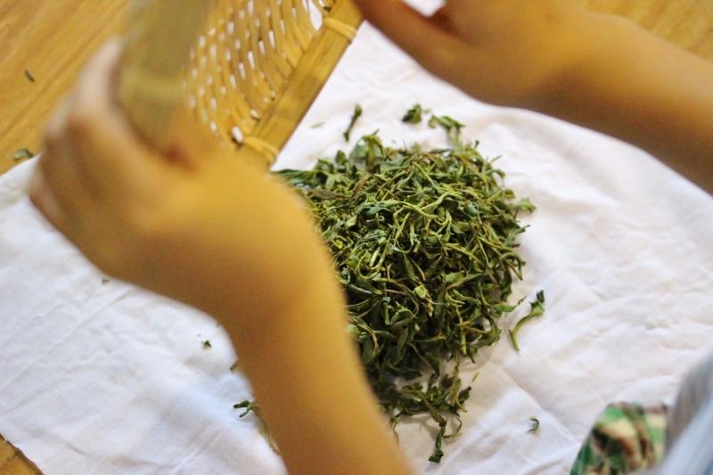 作手にて紅茶作り体験_b0220318_11322535.jpg