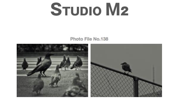 STUDIO M2 Photo File No.138 「TOKYOカラス ~ 鳩鳩鴉鳩鳩 」_a0002672_11223589.jpg