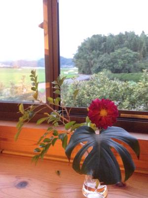 9歳を迎えた森の家と 8月のスタート***_e0290872_20005568.jpg