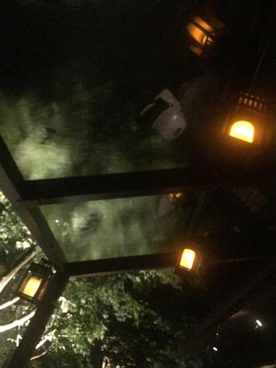 雷雨の中でもドライな私たち_d0133485_1613872.jpg
