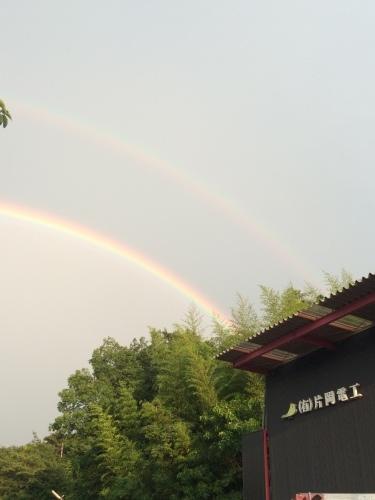 雨降って……_d0351894_18110022.jpeg