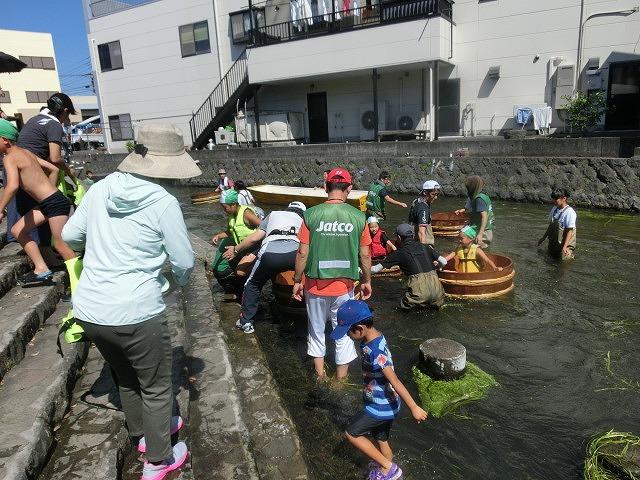 30回、記念の年の「田宿川たらい流し川祭り」_f0141310_7394411.jpg