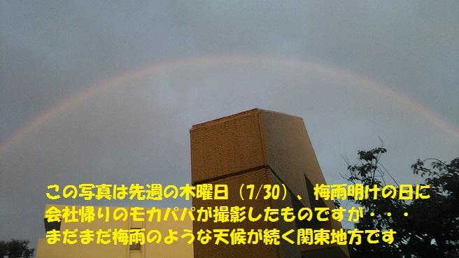 f0121712_17381759.jpg