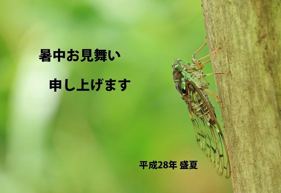 a0321022_18250194.jpg
