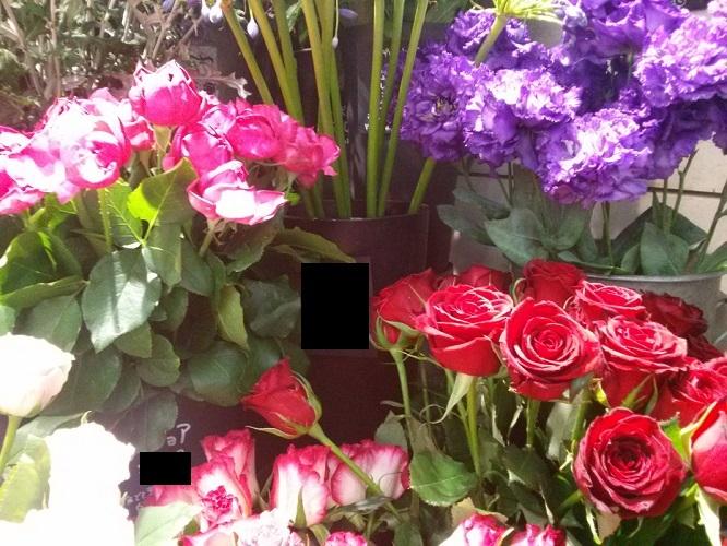 b0348724_22212575.jpg