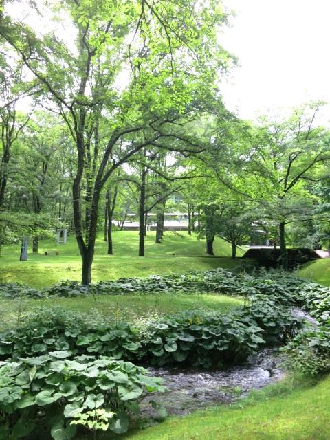 町民美術館の日*「セゾン現代美術館」で森林浴♪_f0236260_1262892.jpg