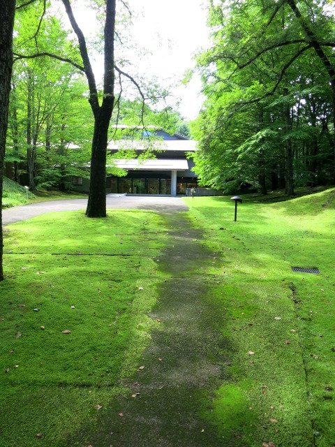 町民美術館の日*「セゾン現代美術館」で森林浴♪_f0236260_1331751.jpg