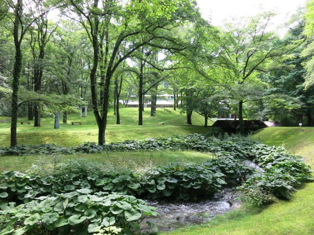 町民美術館の日*「セゾン現代美術館」で森林浴♪_f0236260_153816.jpg
