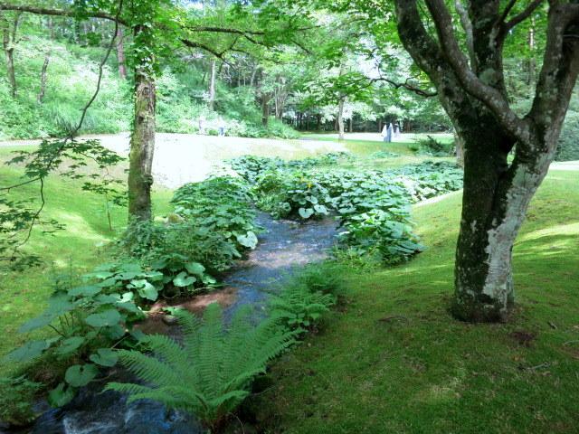 町民美術館の日*「セゾン現代美術館」で森林浴♪_f0236260_4395067.jpg